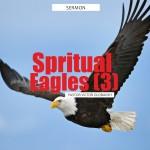 Spiritual Eagles (3), by Pastor Victor Olobaniyi