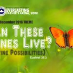 December 2016 Theme - Can These Bone Live? (Divine Possibilities) - Ezekiel 37:3
