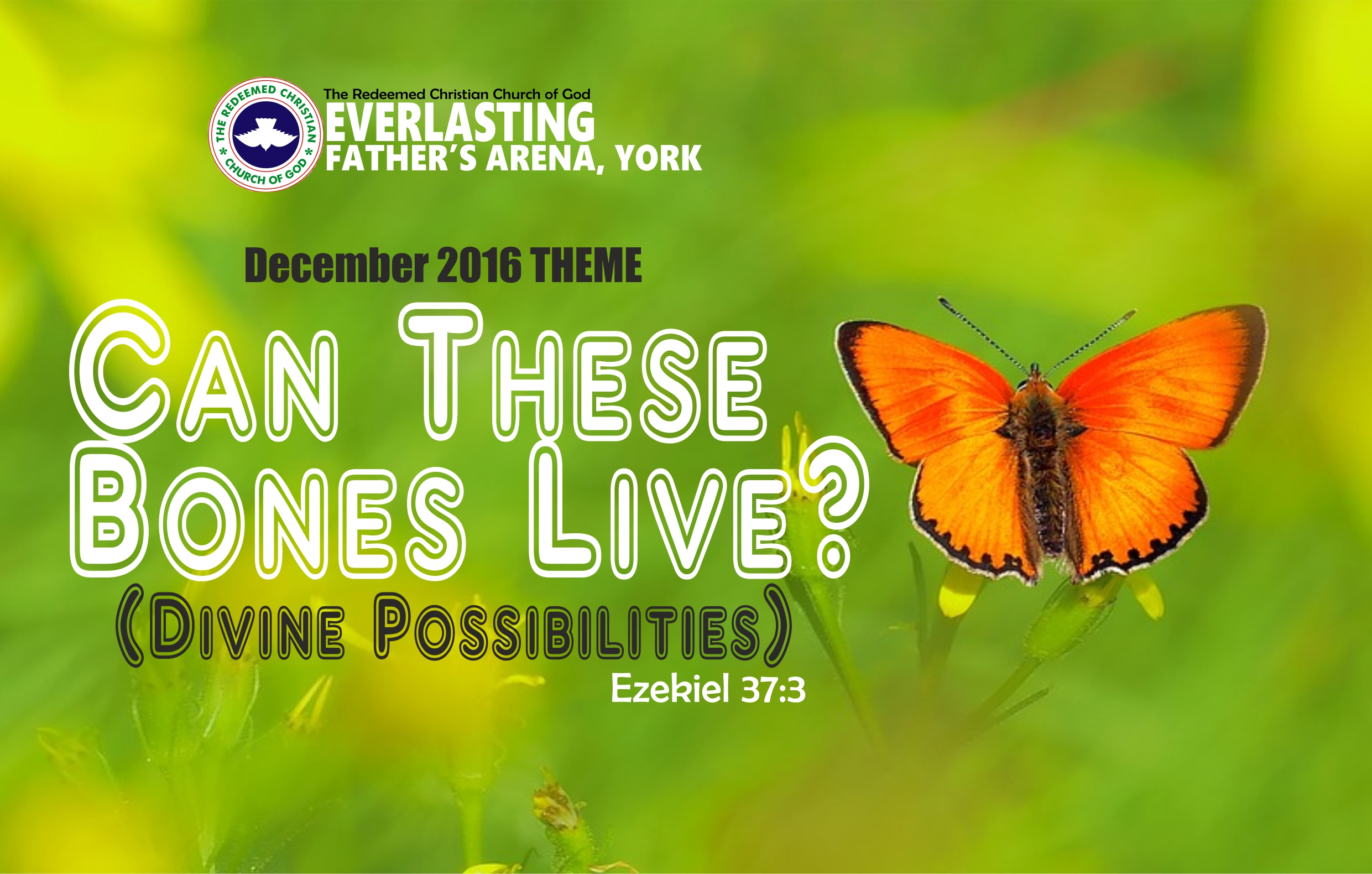 December 2016 Theme – Can These Bone Live? (Divine Possibilities) – Ezekiel 37:3