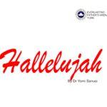 Hallelujah! by Dr Yomi Sanusi