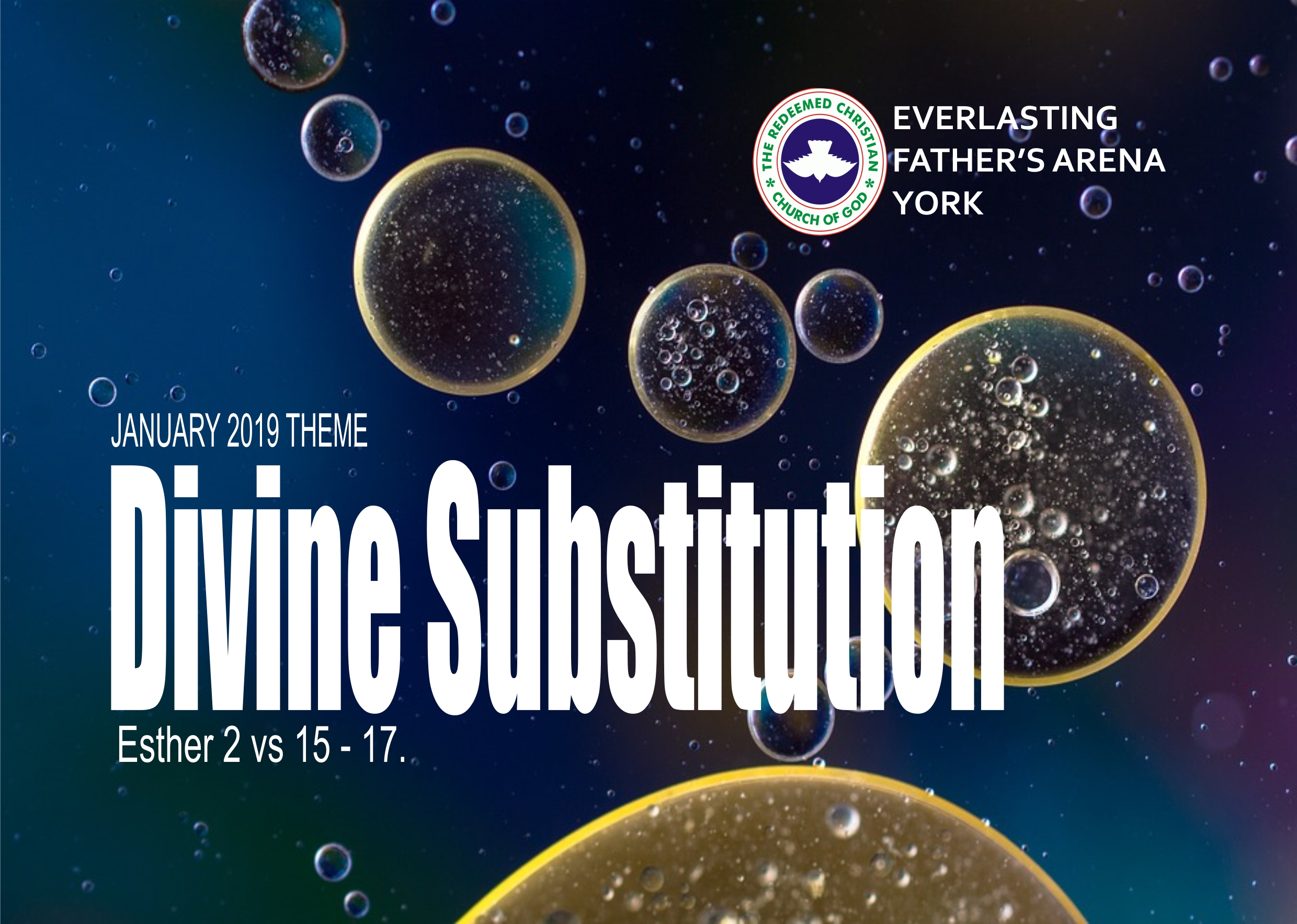 January 2019 Theme - Divine Substitution (Esther 2:15-17)